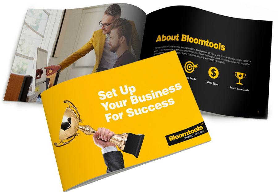 Бизнес дизайн брошюры