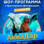 Дизайн афиши для дельфинария